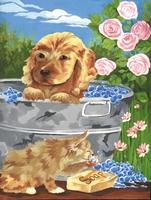 PJS37 PBN Junior Small BATHTIME FRI