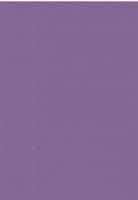 Vierkant karton 13,5 X 27 cm  Nr 62 Druivenpaars per 5 vel