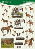 VB2225 3D Paarden