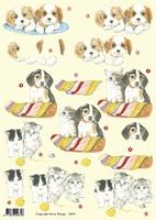 VB2674 Puppies