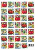 8853T54 Knipvel Fruit + Vellum