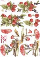 821520  LeSuh Vruchten