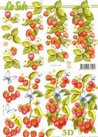 8215302 LeSuh Vruchten