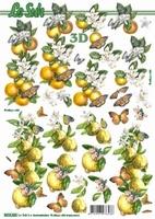 8215323 LeSuh Vruchten