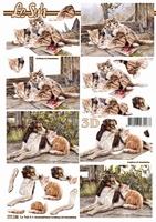 777148 LeSuh Honden-poezen