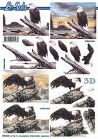 777171 LeSuh Vogels