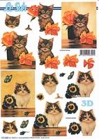777282 LeSuh Kittens