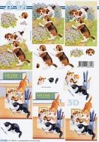 777433 LeSuh Pups en kittens